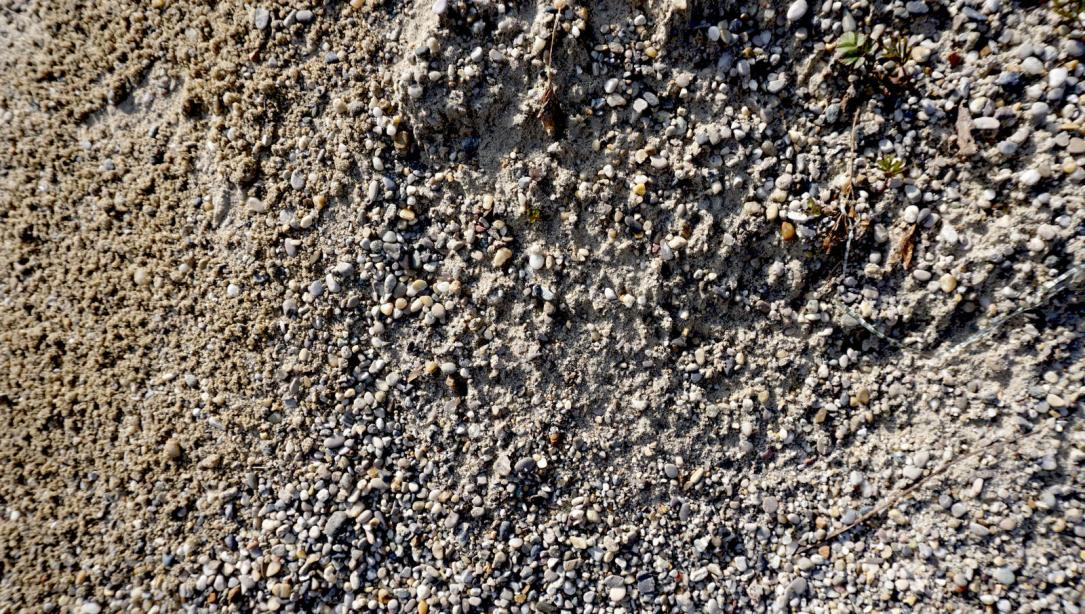utah-sandy-soil