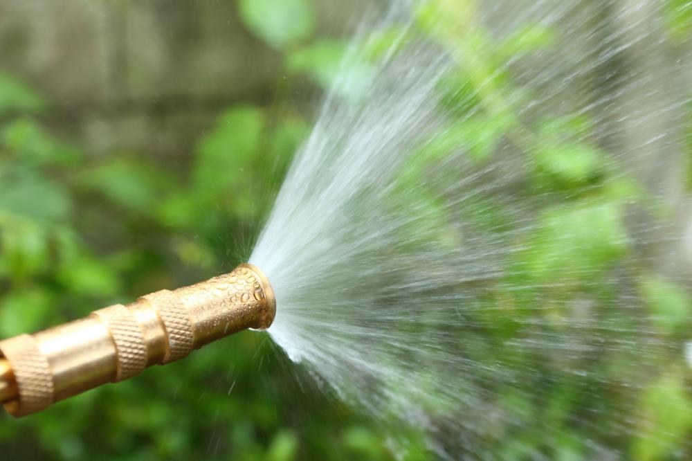 watering-needs-utah-plants